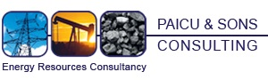 Paicu&Sons Consulting